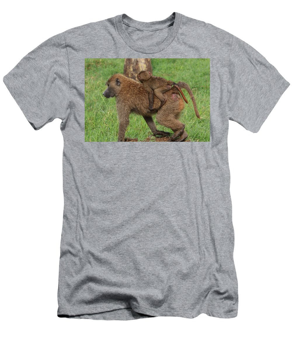 Baboon Men's T-Shirt (Athletic Fit) featuring the photograph Hitching A Ride by Aidan Moran