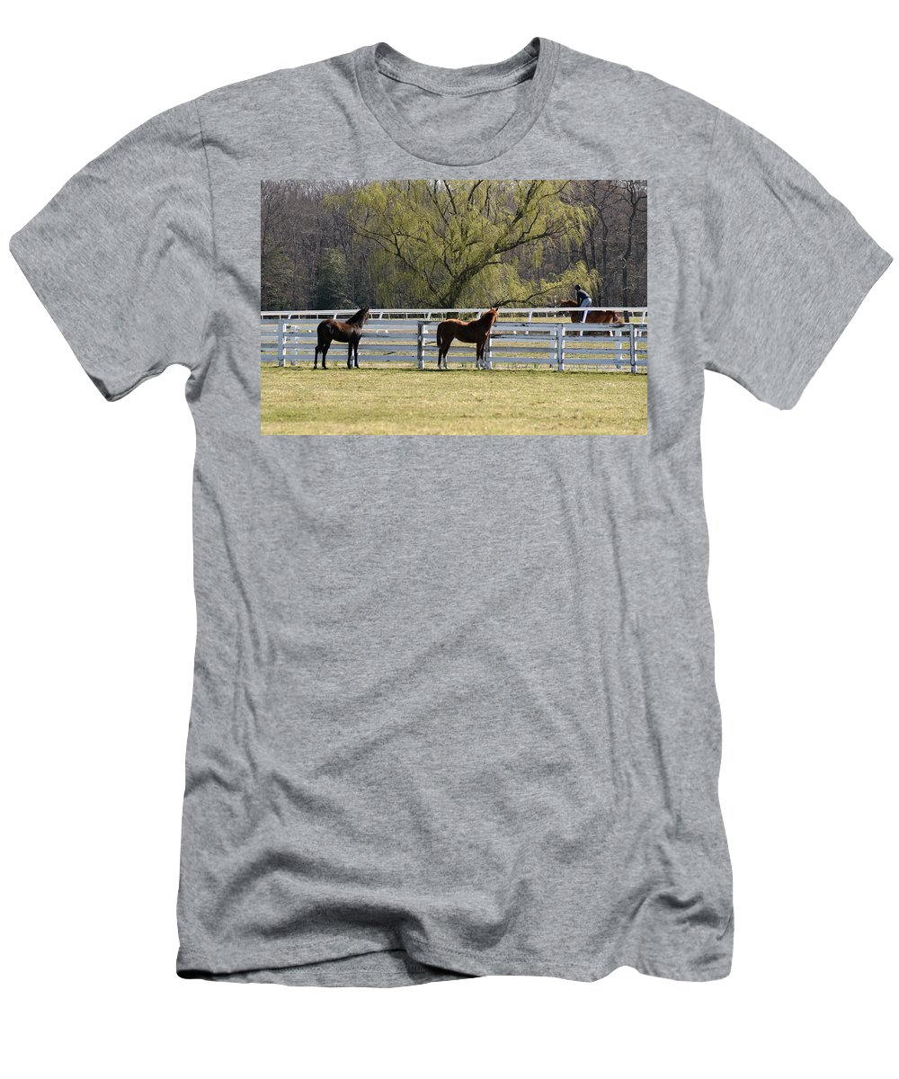 Horse Men's T-Shirt (Athletic Fit) featuring the photograph Horses 363 by Joyce StJames