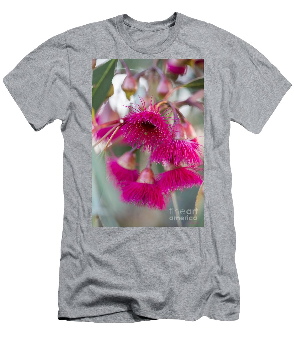 Flower T-Shirt featuring the photograph Hot Pink by Linda Lees
