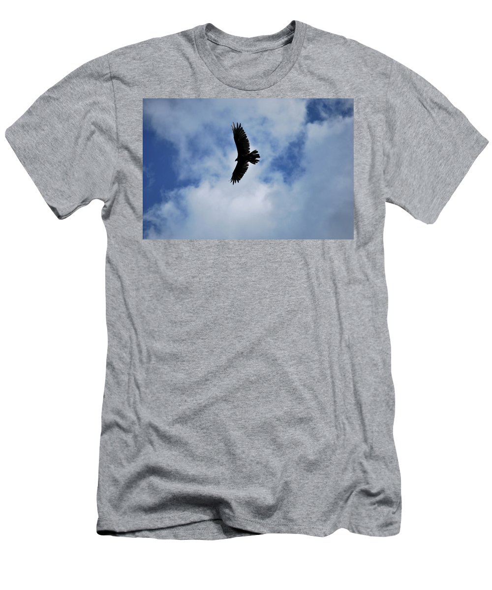 Bird Men's T-Shirt (Athletic Fit) featuring the photograph I Love The View From Up Here by Lori Tambakis