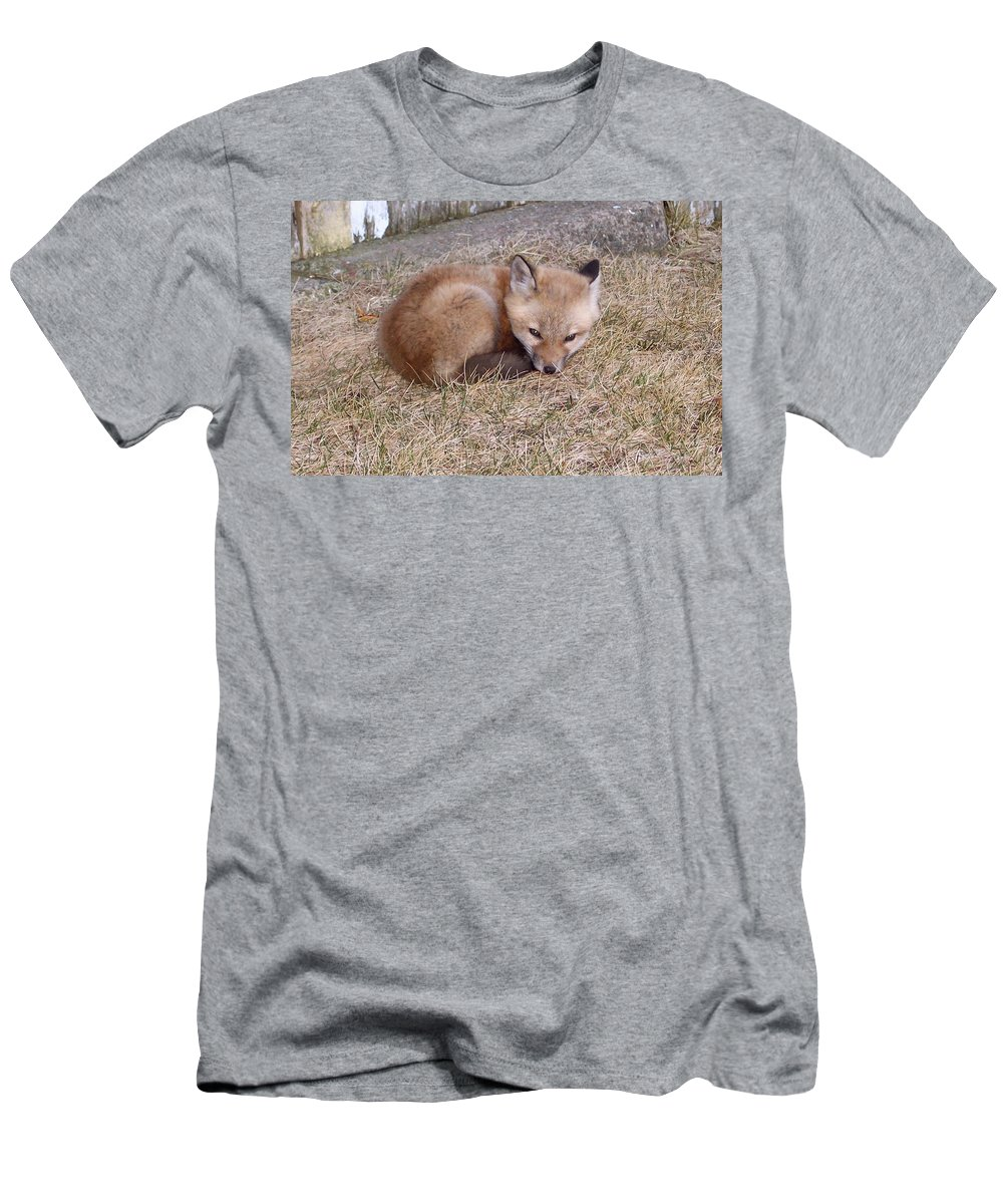 Fox Men's T-Shirt (Athletic Fit) featuring the photograph I'll Wait Here For Mom by Maureen Beaudet