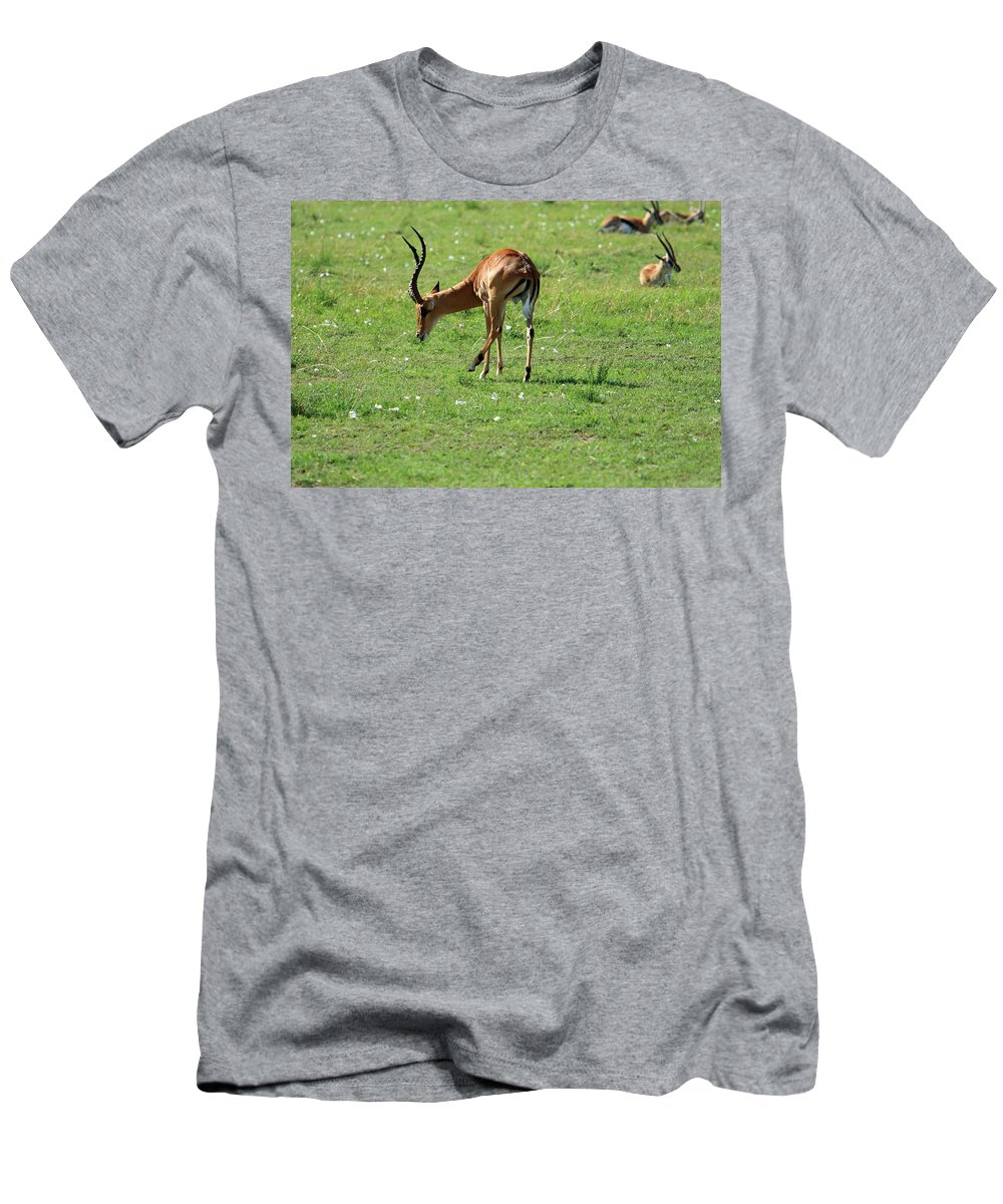 Deer Men's T-Shirt (Athletic Fit) featuring the photograph Impala Buck by Aidan Moran