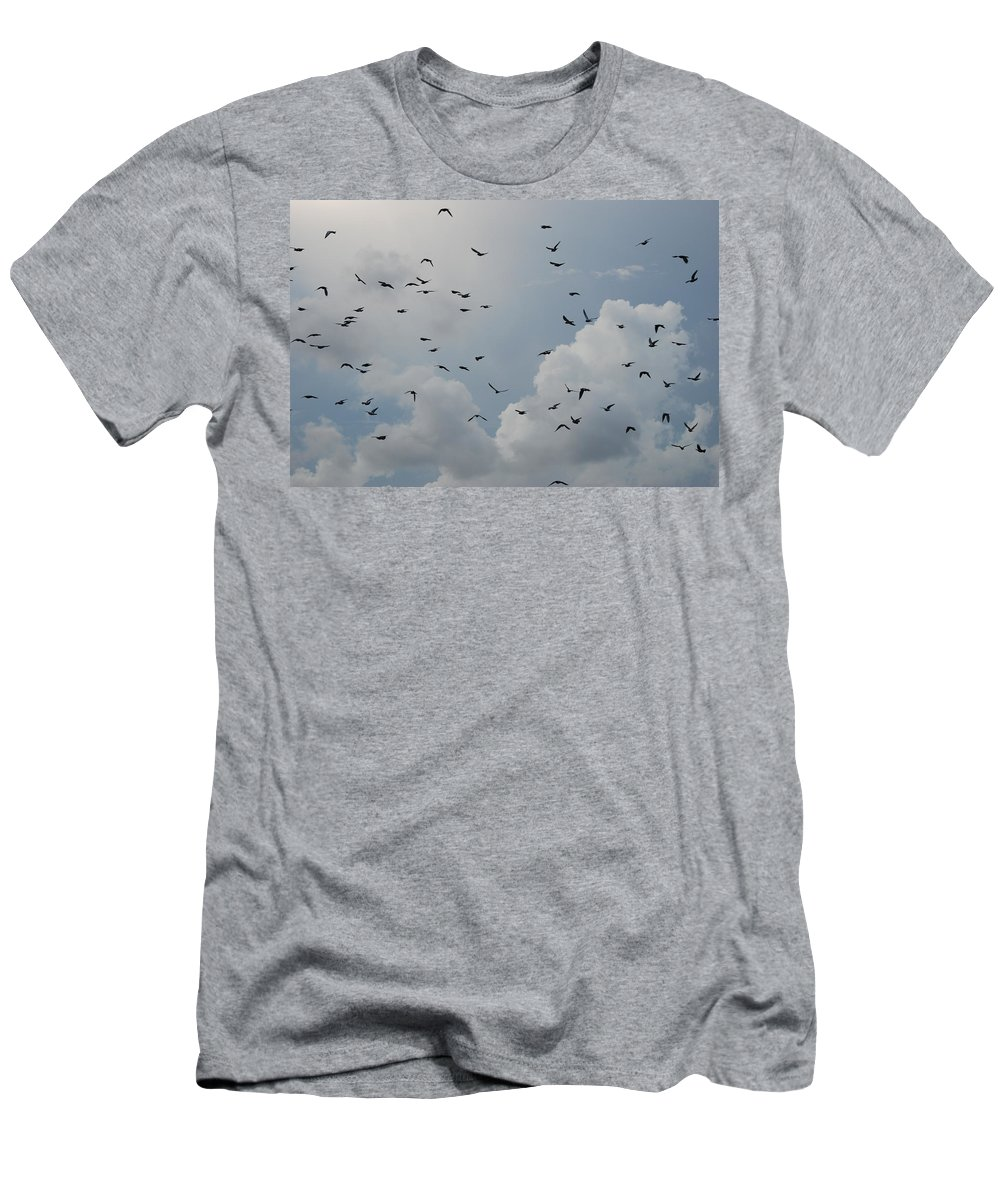 Birds Men's T-Shirt (Athletic Fit) featuring the photograph In Flight by Rob Hans
