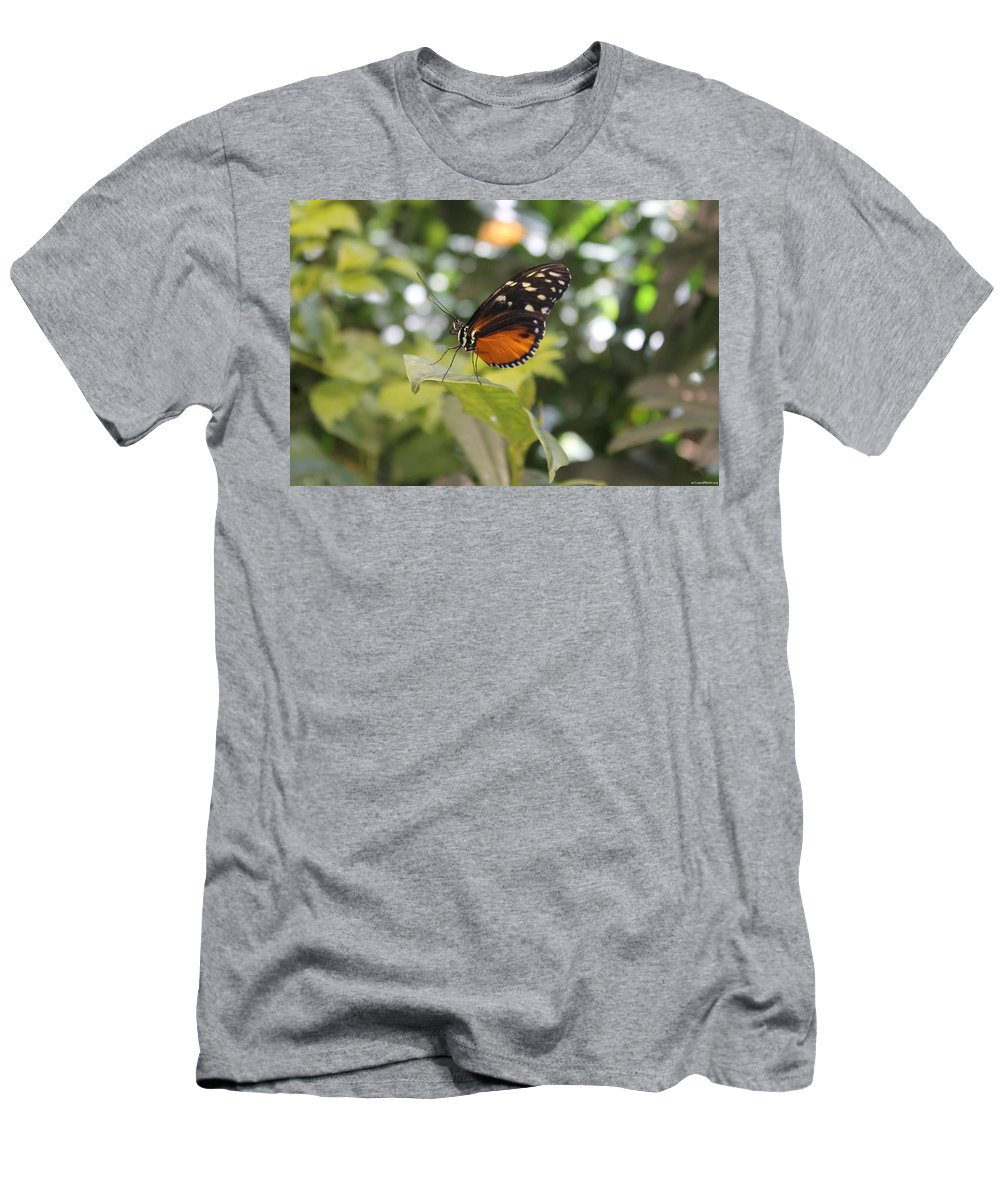 Butterfly Men's T-Shirt (Athletic Fit) featuring the photograph In The Butterfly Room At The Insectarium by Laura Martin
