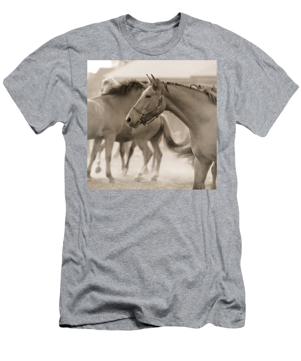 Horses Men's T-Shirt (Athletic Fit) featuring the photograph In The Dust by Angel Ciesniarska