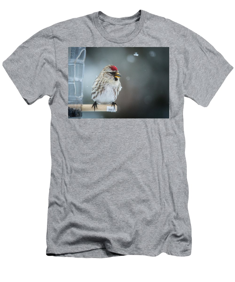Redpoll Men's T-Shirt (Athletic Fit) featuring the photograph In The Snow by Schalk Lombard