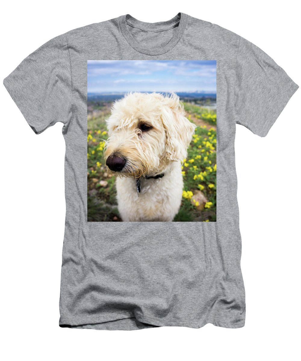 Labradoodle Men's T-Shirt (Athletic Fit) featuring the photograph In Your Muzzle by Cary Leppert