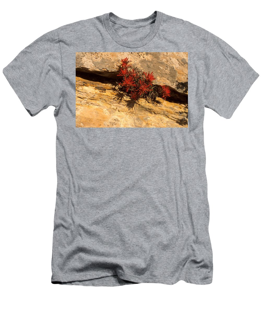 Indian Paint Brush Men's T-Shirt (Athletic Fit) featuring the photograph Indian Paint Brush by Jerry McElroy