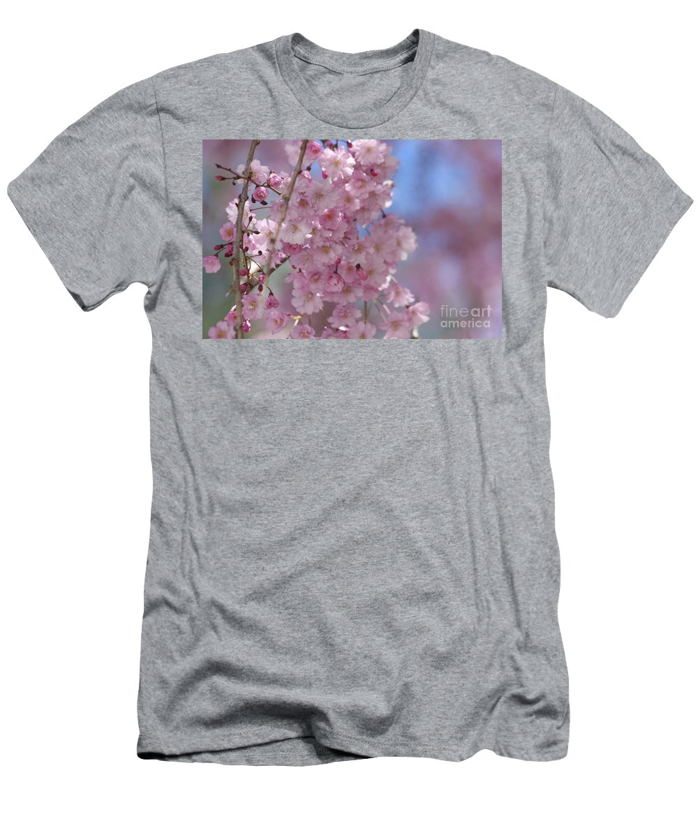 Japanese Cherry Blossom Men's T-Shirt (Athletic Fit) featuring the photograph Into The Sakura - Japanese Cherry Blossom by Christina Gupfinger