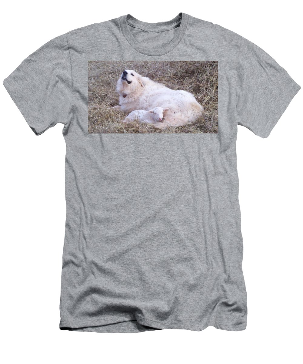 Great Pyrenees Dog T-Shirt featuring the photograph Isabel and Molly 2 by Ginger Concepcion