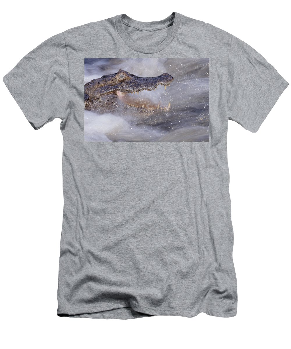 00141513 Men's T-Shirt (Athletic Fit) featuring the photograph Jacare Caiman Fishing by Tui De Roy