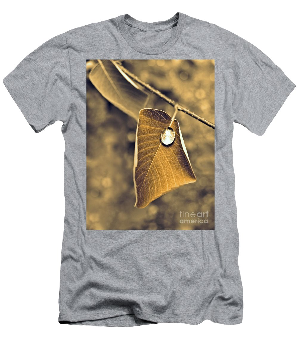 Leaf Men's T-Shirt (Athletic Fit) featuring the photograph June 18 2010 by Tara Turner