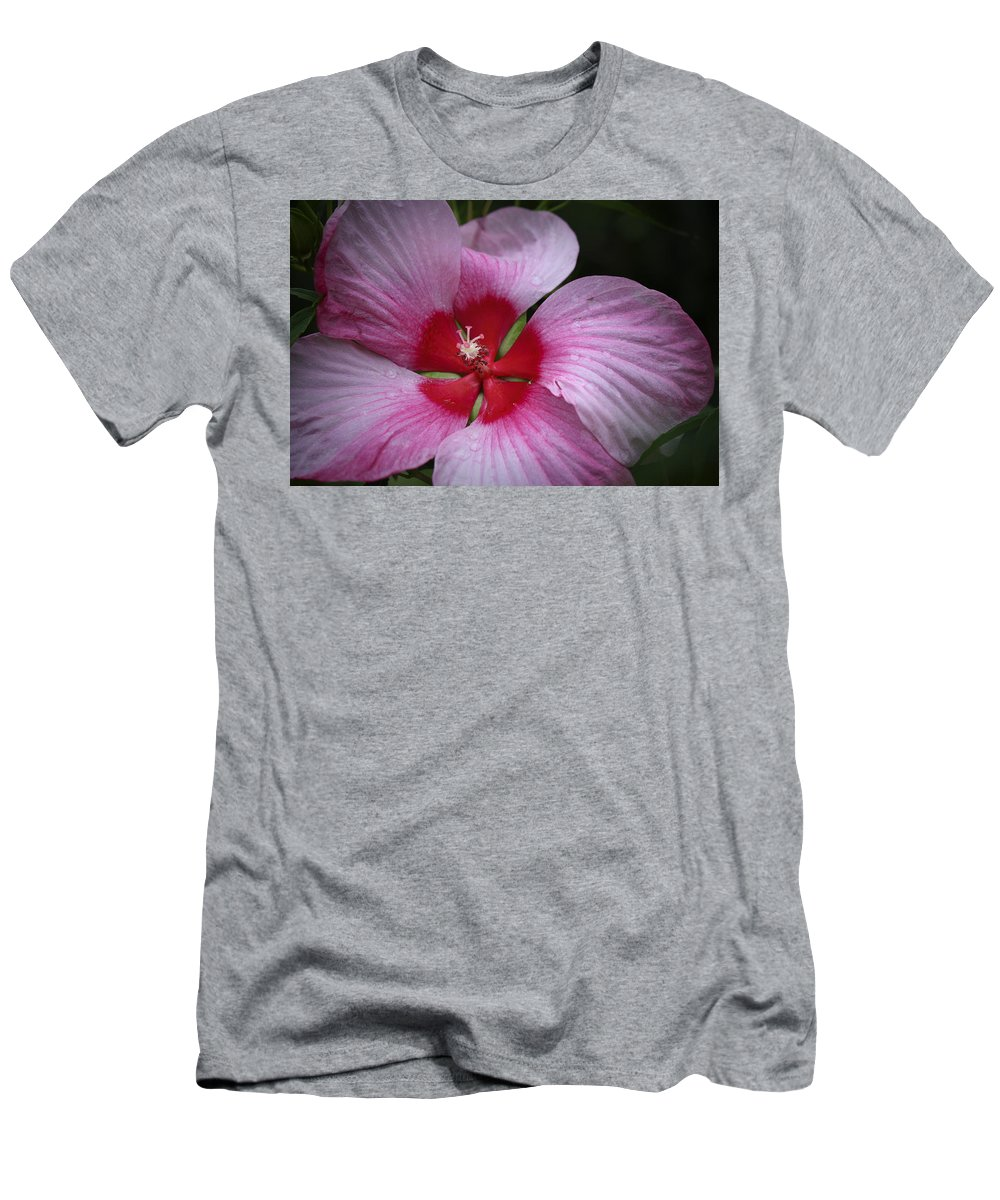 Hibiscus Men's T-Shirt (Athletic Fit) featuring the photograph Junes Hibiscus 2 by Teresa Mucha