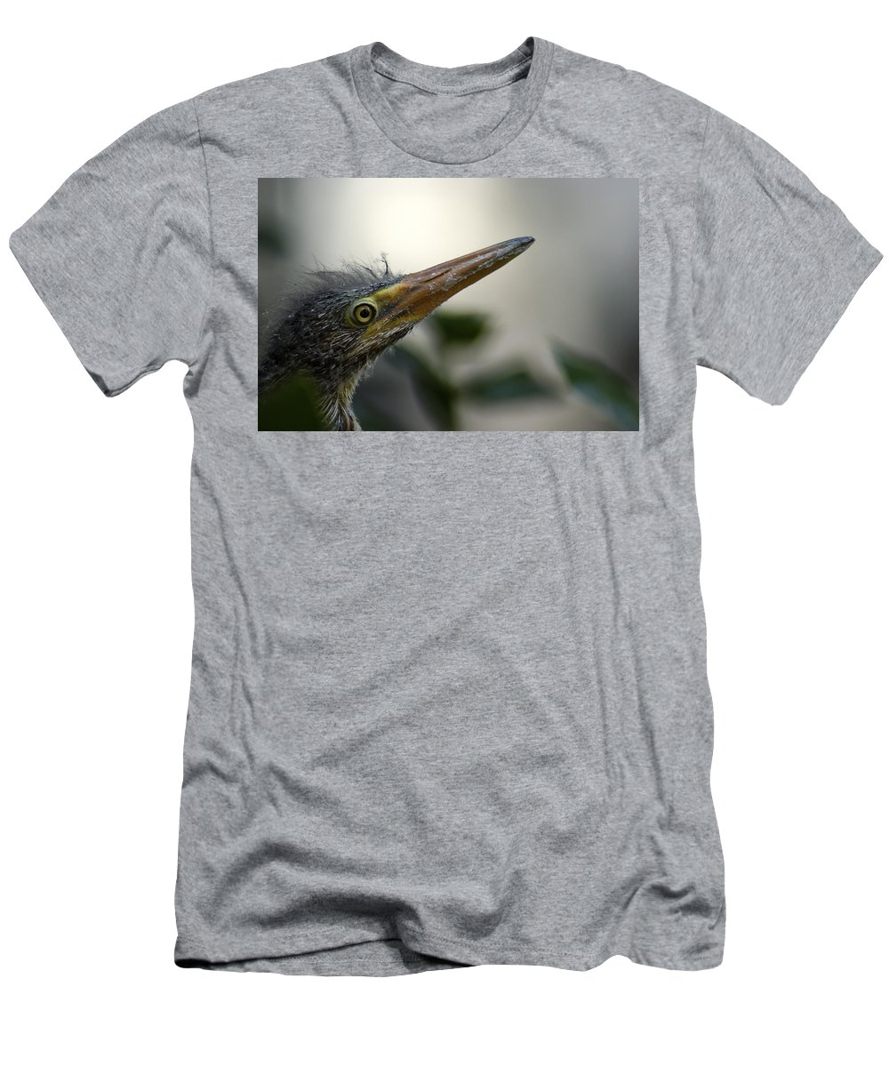 Heron Men's T-Shirt (Athletic Fit) featuring the photograph Just Love Me by D'Arcy Evans