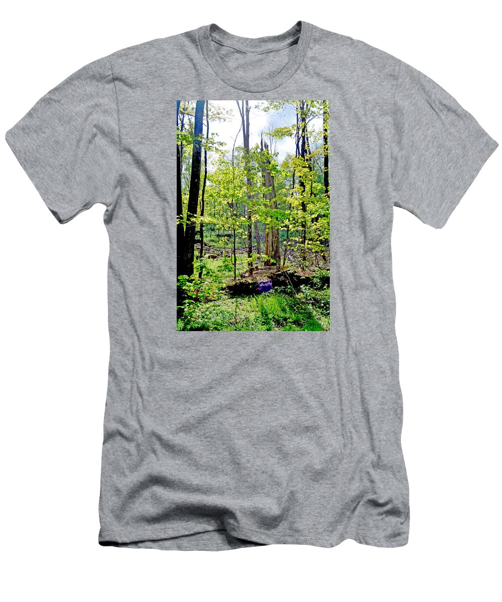 Woods T-Shirt featuring the photograph Keep Walking by Donna Petersen