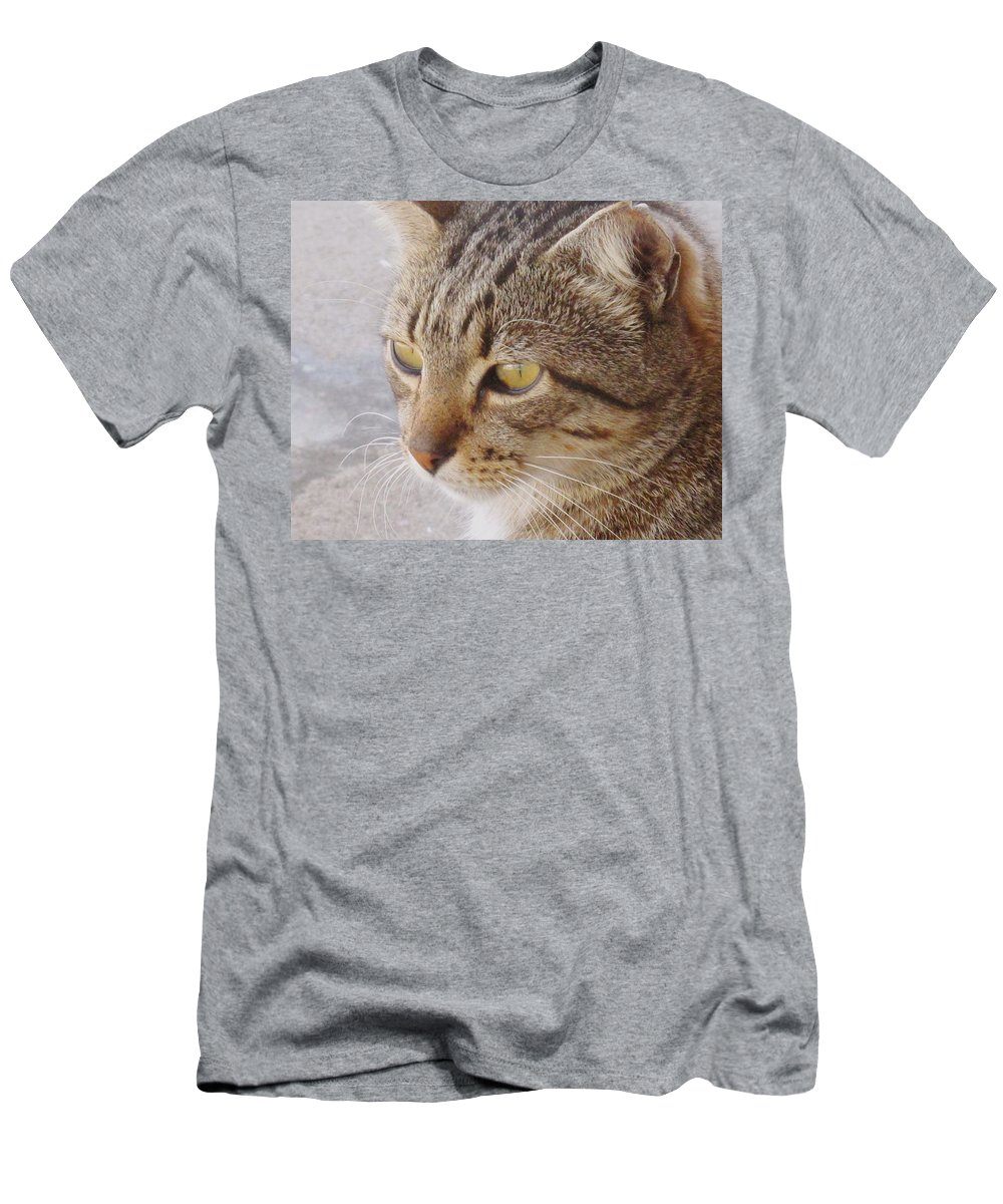 Cat Men's T-Shirt (Athletic Fit) featuring the photograph King Cat by Ian MacDonald