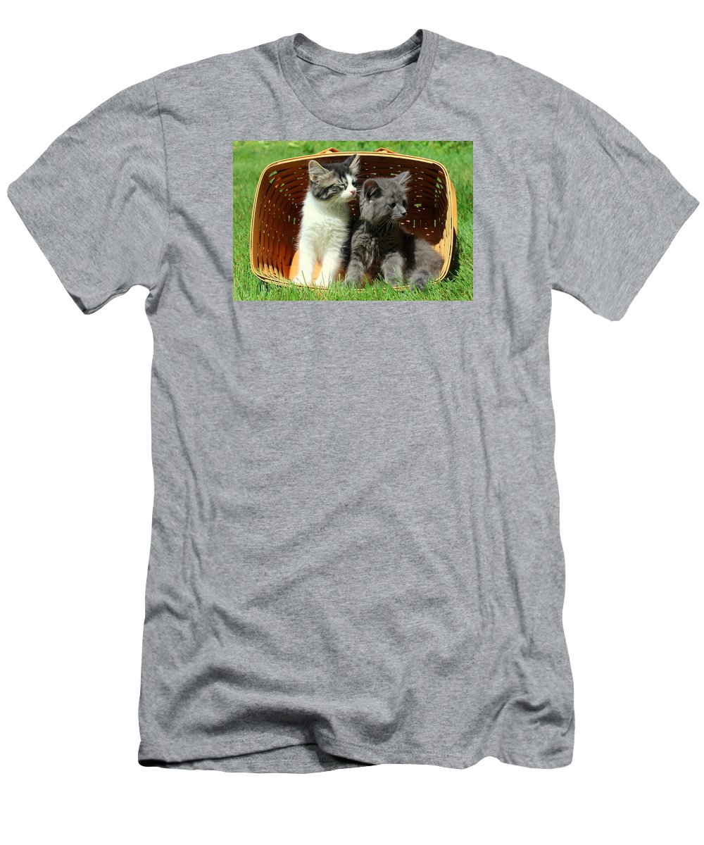 Kitten Men's T-Shirt (Athletic Fit) featuring the photograph Kitten Smells Something Good by Anita Hiltz