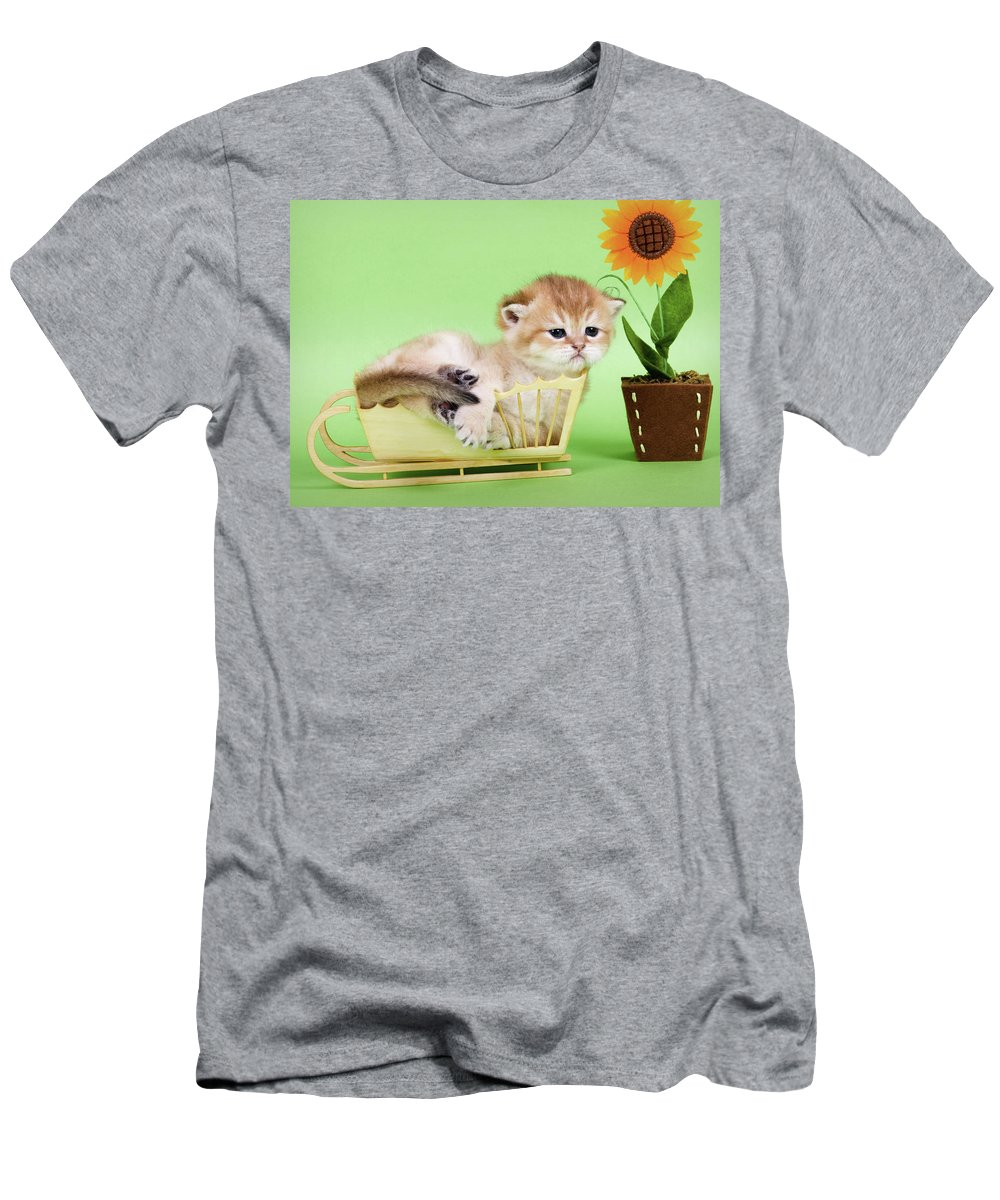 Cat Men's T-Shirt (Athletic Fit) featuring the photograph Kitten With Flover by Angela Savenko
