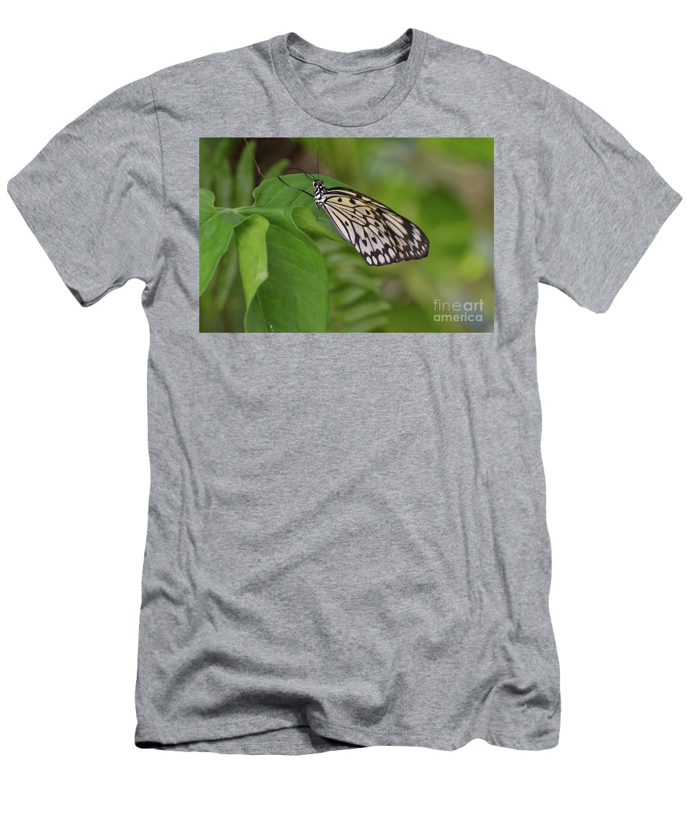 Tree-nymph Men's T-Shirt (Athletic Fit) featuring the photograph Large White Tree Nymph Butterfly On Green Foliage by DejaVu Designs