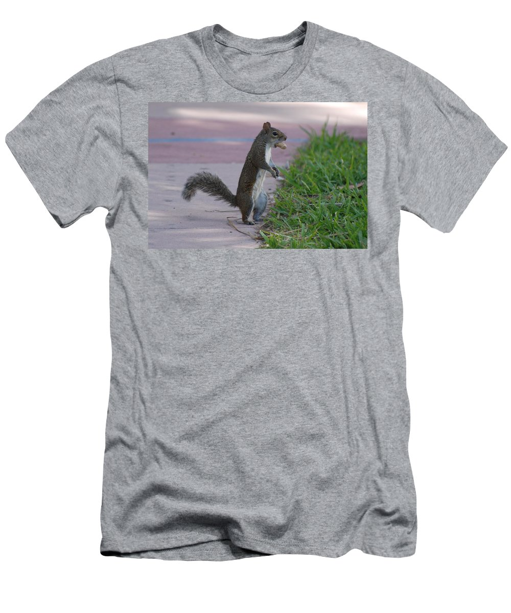 Squirrels Men's T-Shirt (Athletic Fit) featuring the photograph Last Squirrel Standing by Rob Hans