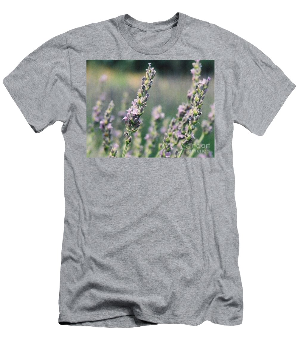 Flowers Men's T-Shirt (Athletic Fit) featuring the painting Lavender by Eric Schiabor