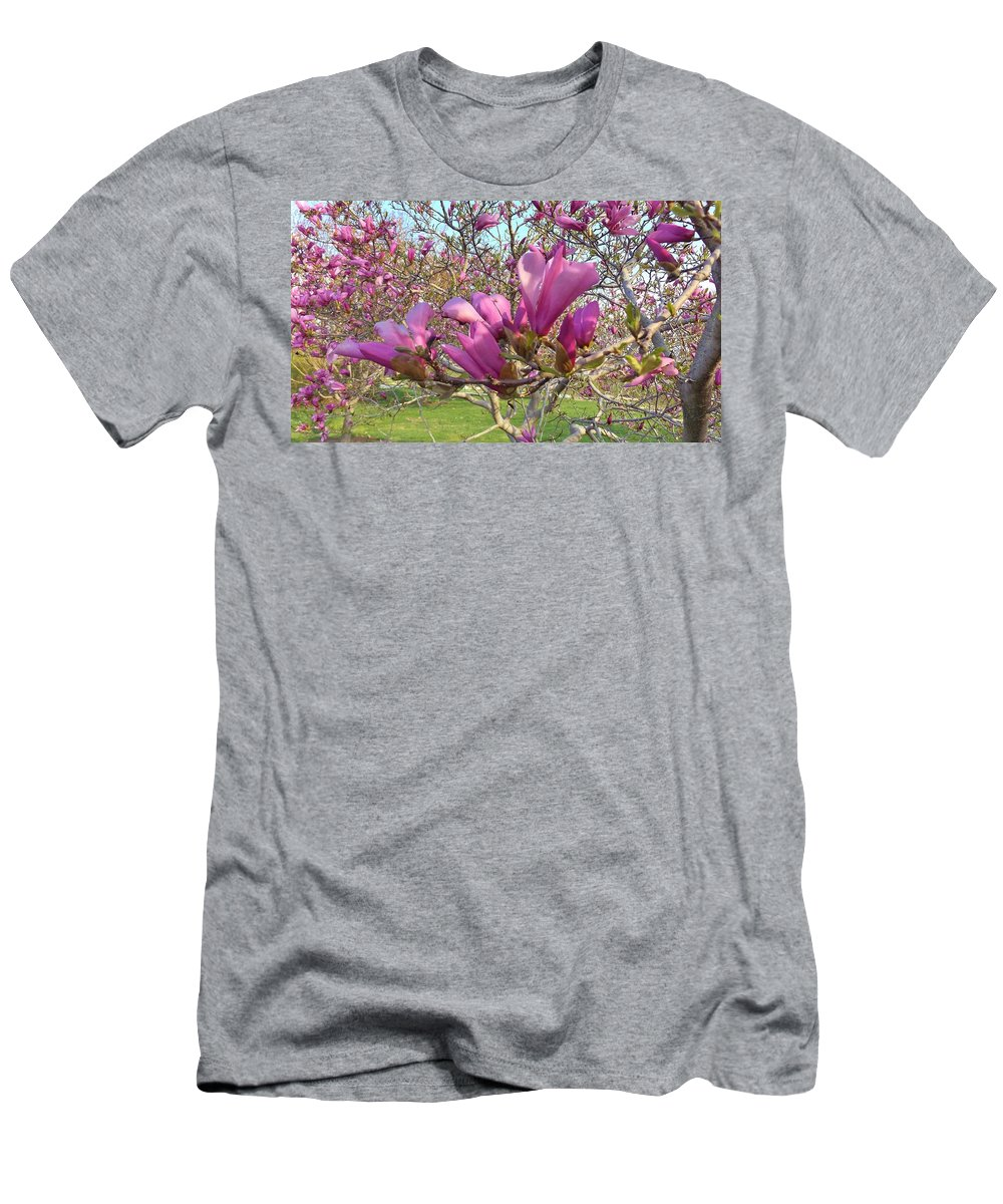 Tree Men's T-Shirt (Athletic Fit) featuring the photograph Lavender Tulip Tree Blossums  Spring   Indiana by Rory Cubel