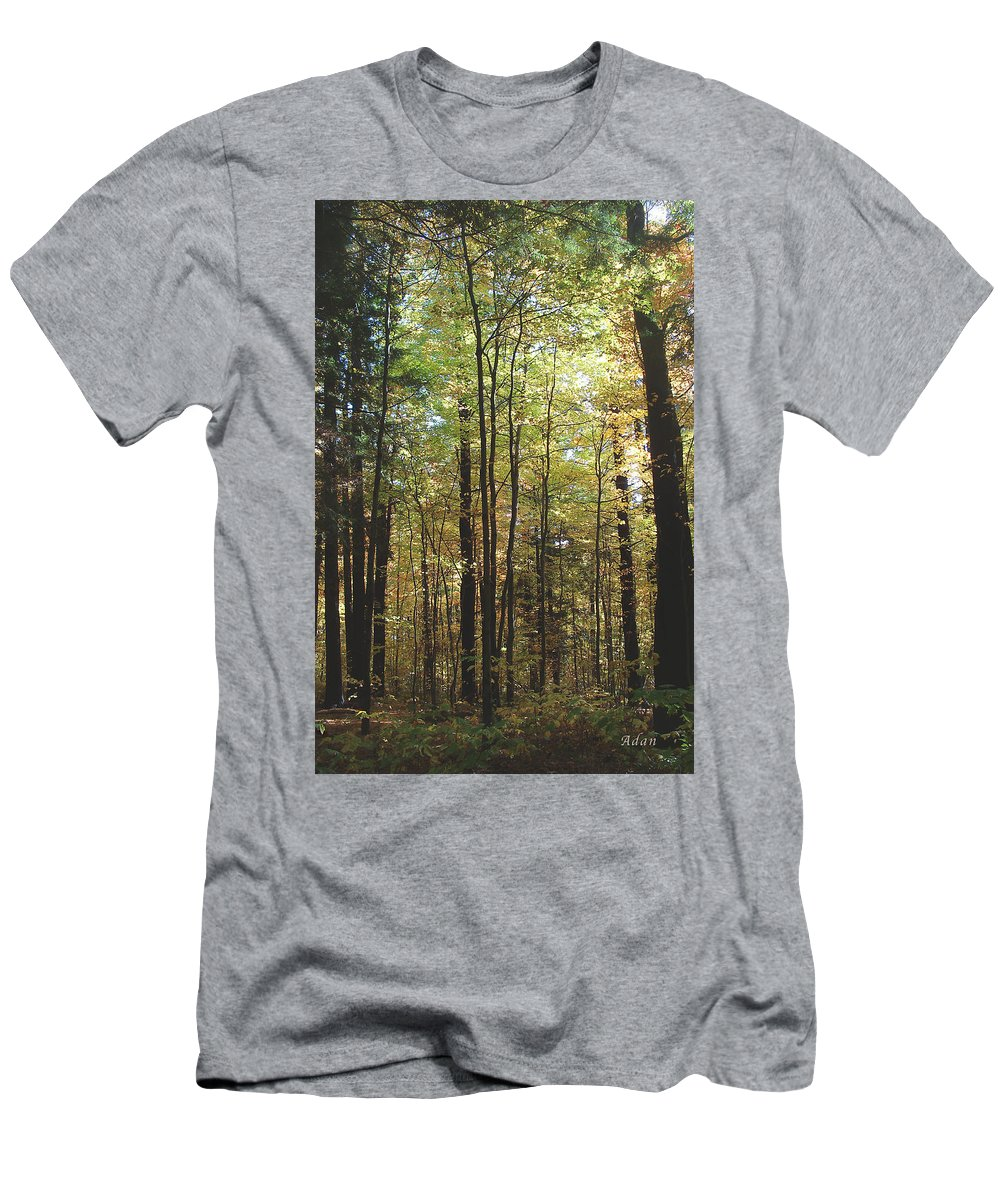 Forest Men's T-Shirt (Athletic Fit) featuring the photograph Light Among The Trees Vertical by Felipe Adan Lerma