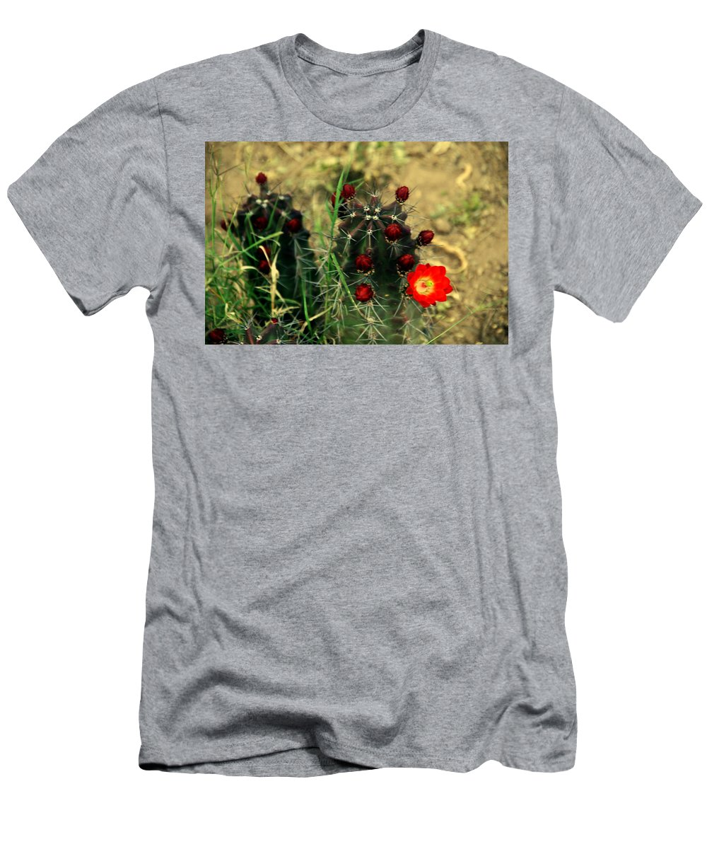 Cactus Men's T-Shirt (Athletic Fit) featuring the photograph Like A Little Red Star by Susanne Van Hulst
