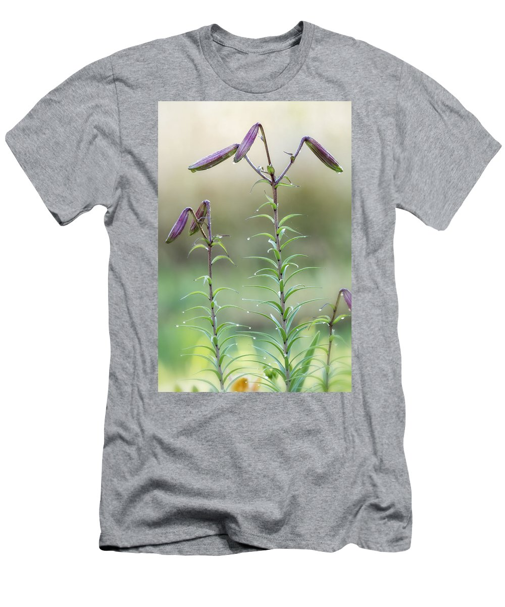 Lily Buds Men's T-Shirt (Athletic Fit) featuring the photograph Lily Buds by Belinda Greb