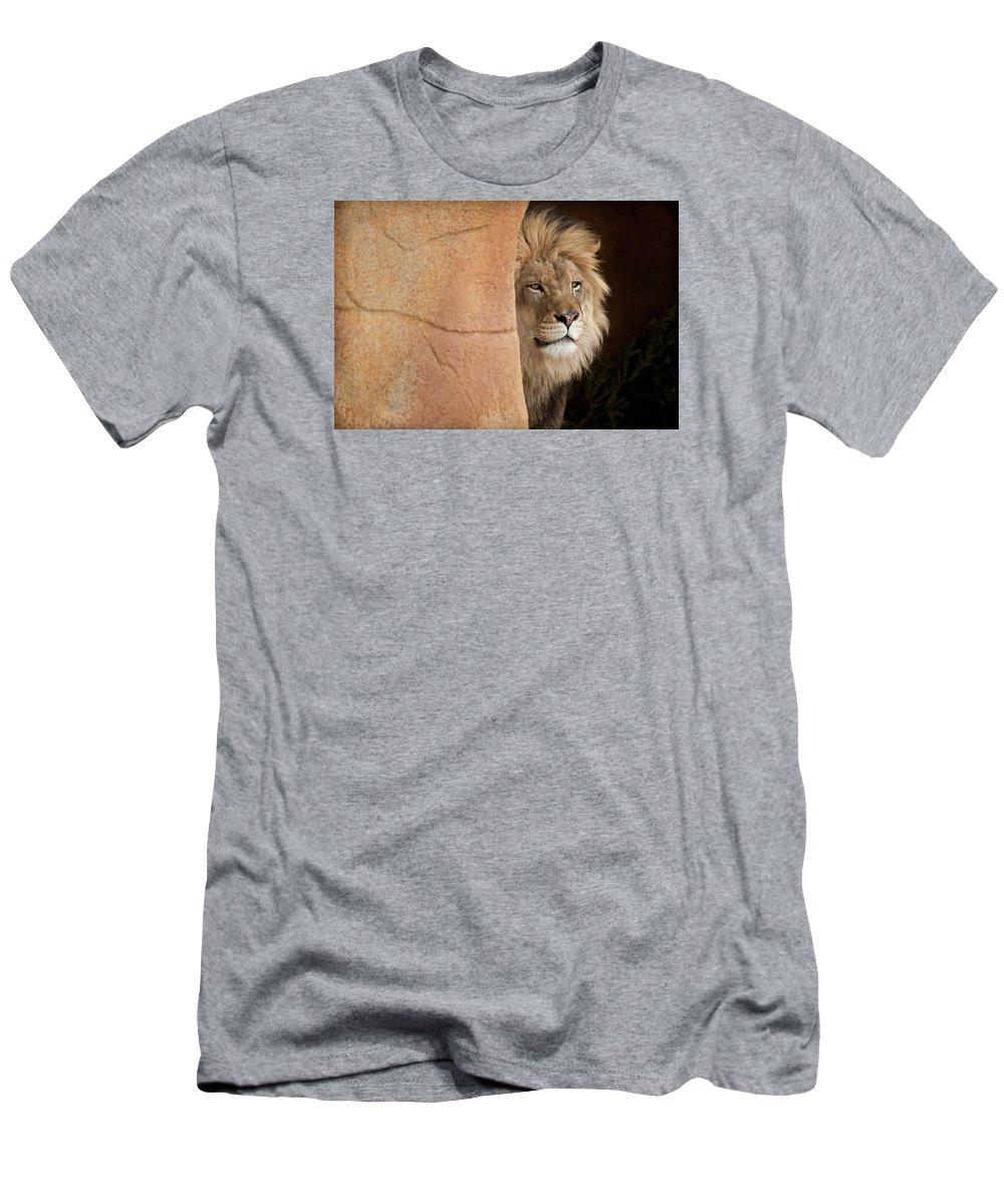 Lion Men's T-Shirt (Athletic Fit) featuring the photograph Lion Emerging  Captive by Steve Gadomski