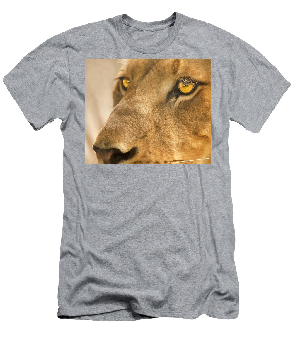 Lion Men's T-Shirt (Athletic Fit) featuring the photograph Lion Face by Carolyn Marshall