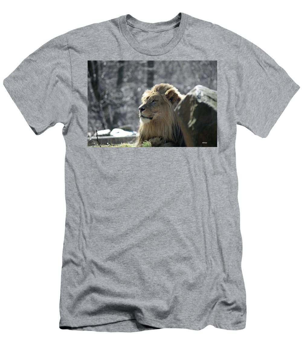 Maryland Men's T-Shirt (Athletic Fit) featuring the photograph Lion King by Ronald Reid