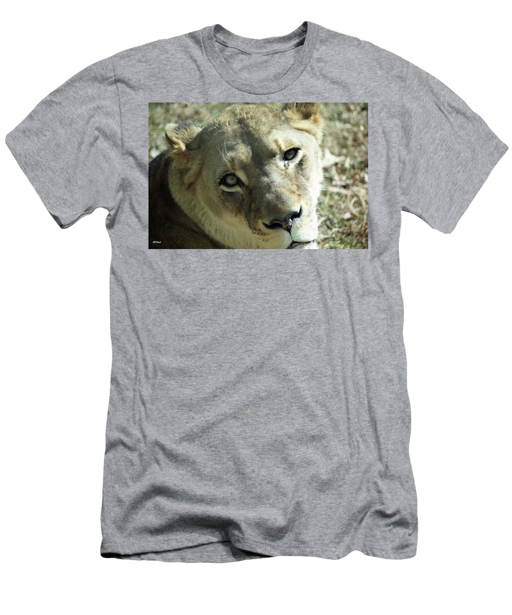 Maryland Men's T-Shirt (Athletic Fit) featuring the photograph Lioness Up Close by Ronald Reid