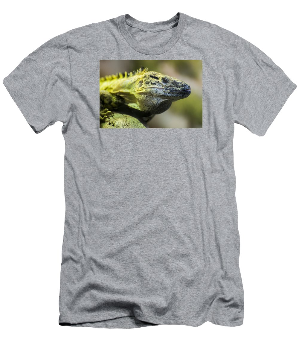 Wildlife Men's T-Shirt (Athletic Fit) featuring the photograph Lizard by Gary Lengyel