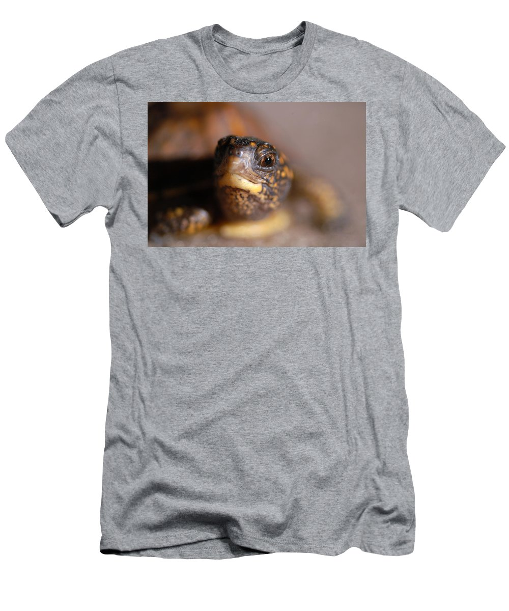 Clay Men's T-Shirt (Athletic Fit) featuring the photograph Lucky by Clayton Bruster