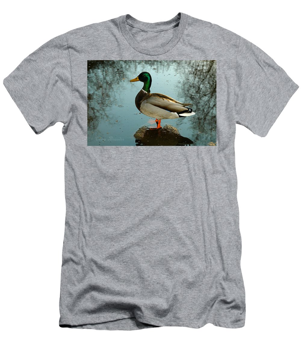 Clay Men's T-Shirt (Athletic Fit) featuring the photograph Mallard by Clayton Bruster
