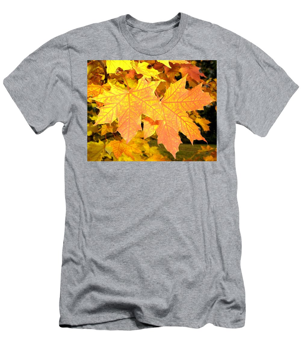 Autumn Men's T-Shirt (Athletic Fit) featuring the photograph Maple Mania 2 by Will Borden