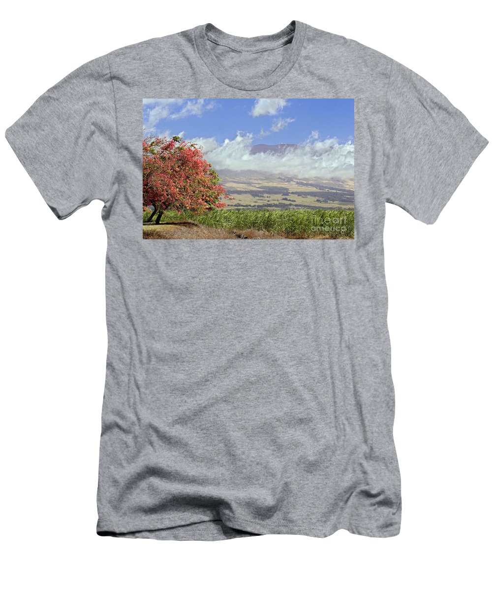 Afternoon Men's T-Shirt (Athletic Fit) featuring the photograph Maui Science City by Dave Fleetham - Printscapes