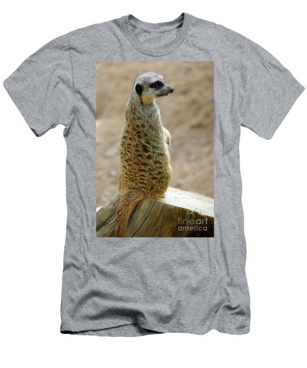Adapted Men's T-Shirt (Athletic Fit) featuring the photograph Meerkat Portrait by Carlos Caetano