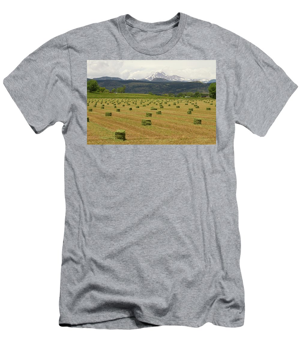 Country Men's T-Shirt (Athletic Fit) featuring the photograph Mid June Colorado Hay And The Twin Peaks Longs And Meeker by James BO Insogna