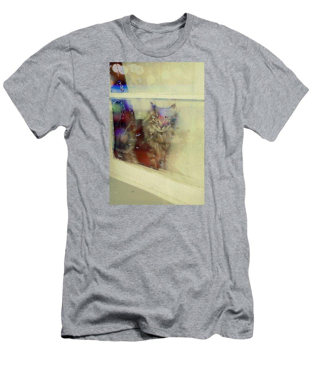 Miszz Cat My Men's T-Shirt (Athletic Fit) featuring the photograph Miszz by Jennifer Battles