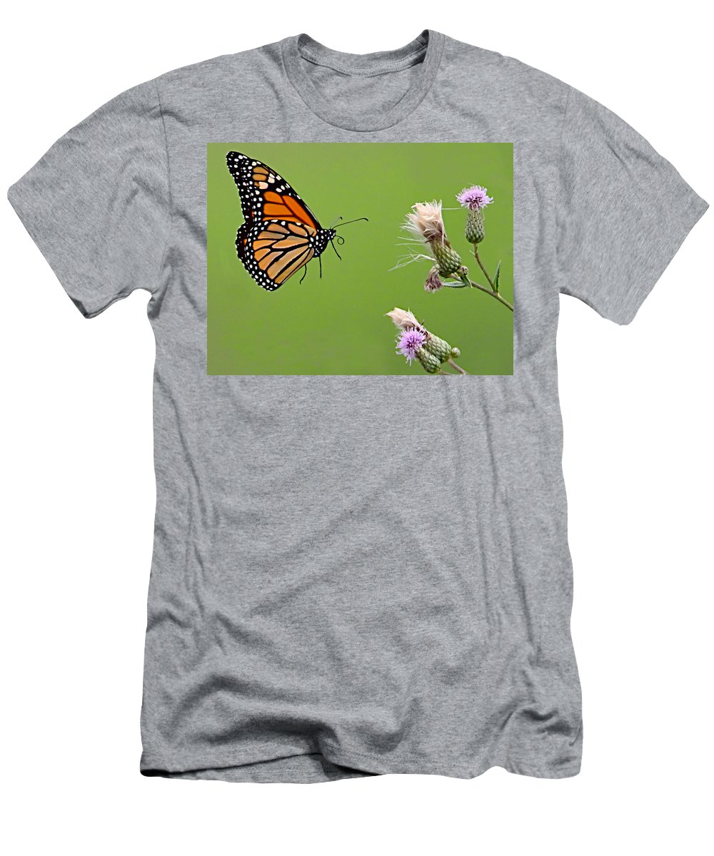 Butterfly Men's T-Shirt (Athletic Fit) featuring the photograph Monarch Butterfly by William Jobes