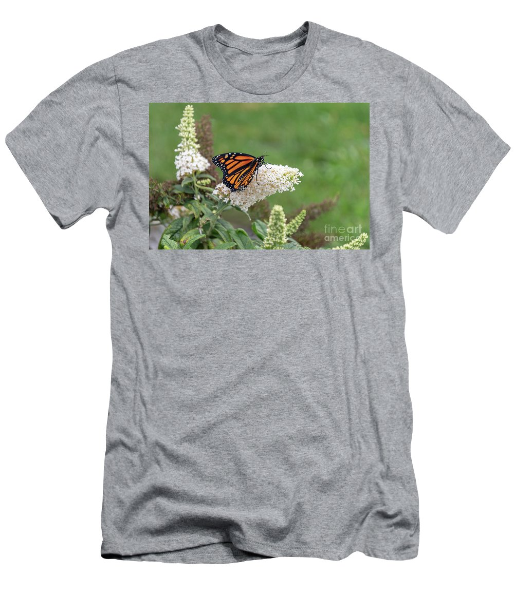 Monarch Butterfly Men's T-Shirt (Athletic Fit) featuring the photograph Monarch On A Butterfly Bush by Dylan Brett