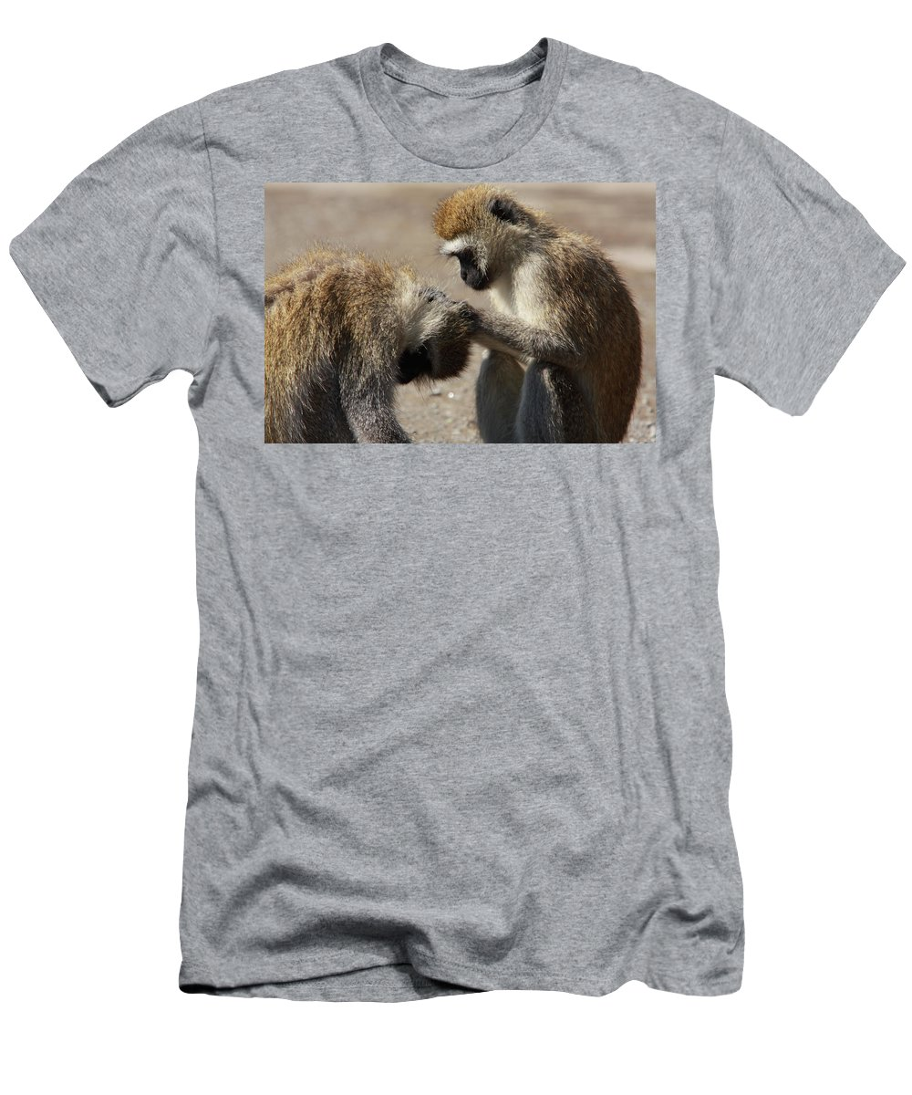 Ape Men's T-Shirt (Athletic Fit) featuring the photograph Monkeys Grooming by Aidan Moran