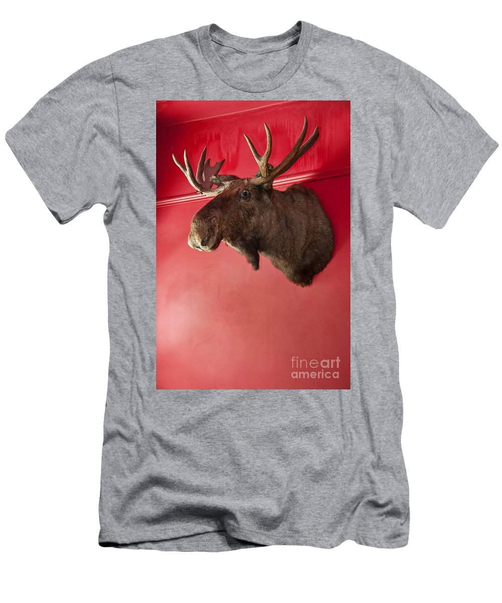Stuffed Men's T-Shirt (Athletic Fit) featuring the photograph Moose Head Mounted On A Wall. by John Greim
