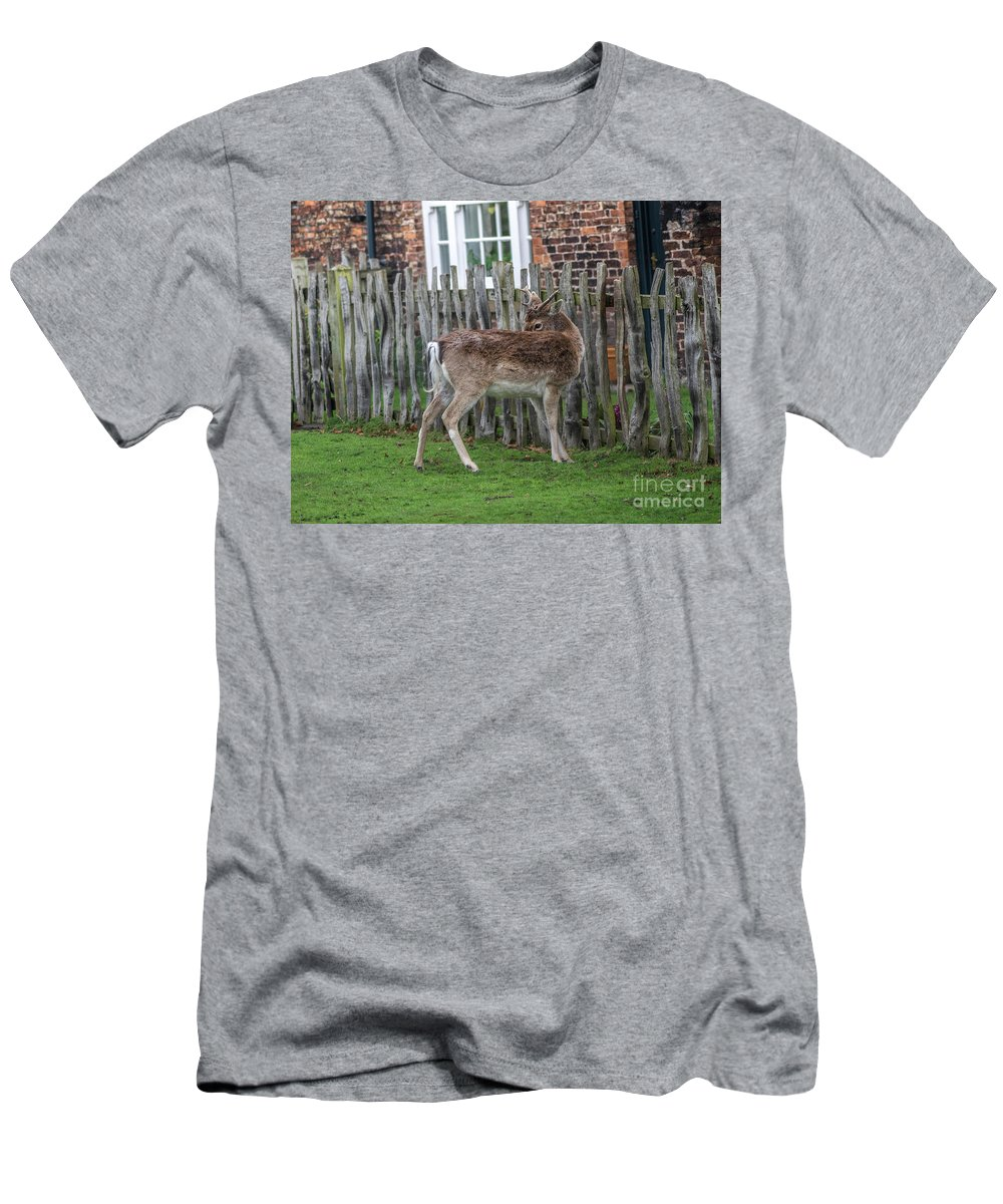 Dear Men's T-Shirt (Athletic Fit) featuring the photograph Morning Visitor by Wayne Heim