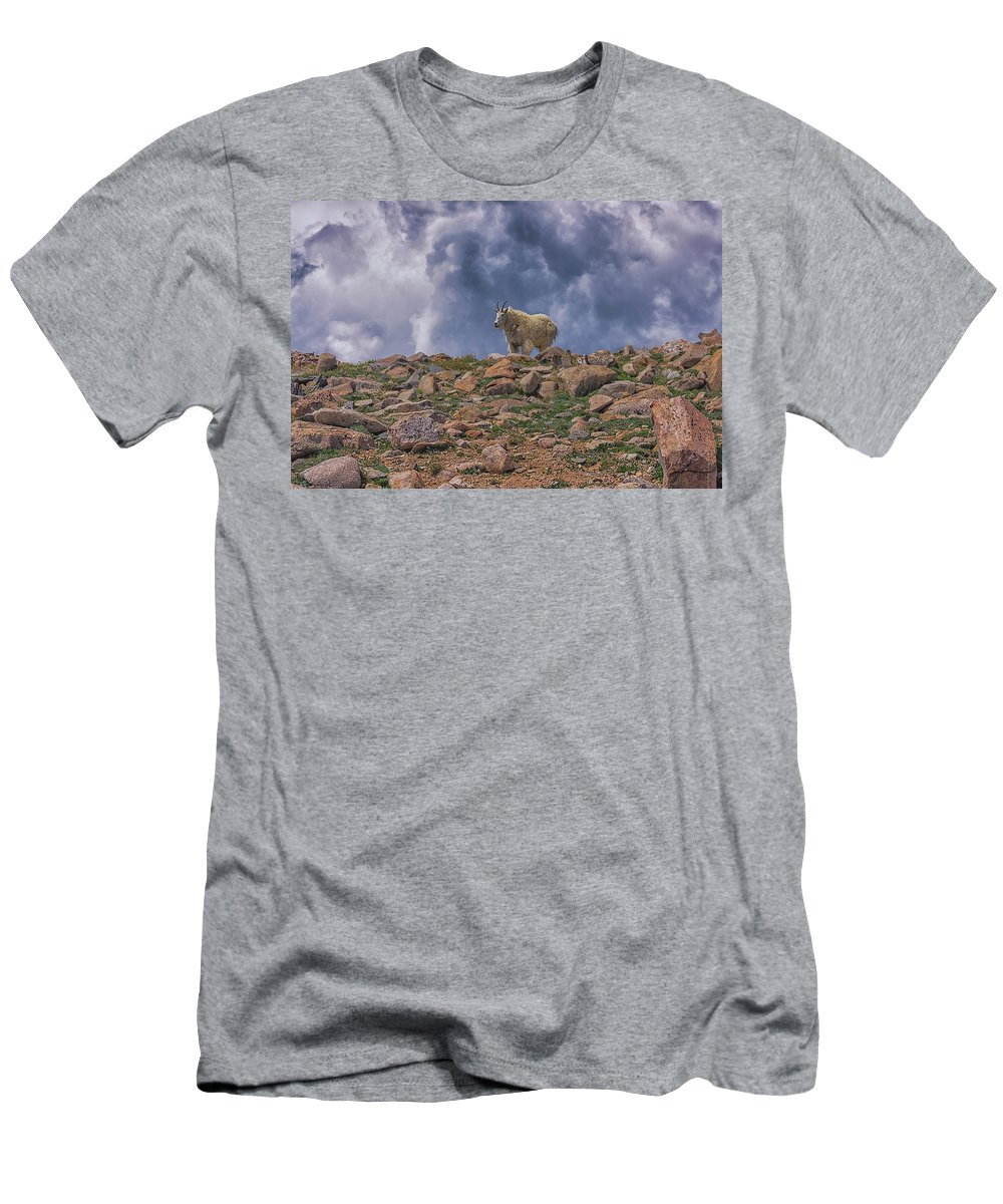 Mountain Goat Overlook Men's T-Shirt (Athletic Fit) featuring the photograph Mountain Goat Overlook by Luis A Ramirez