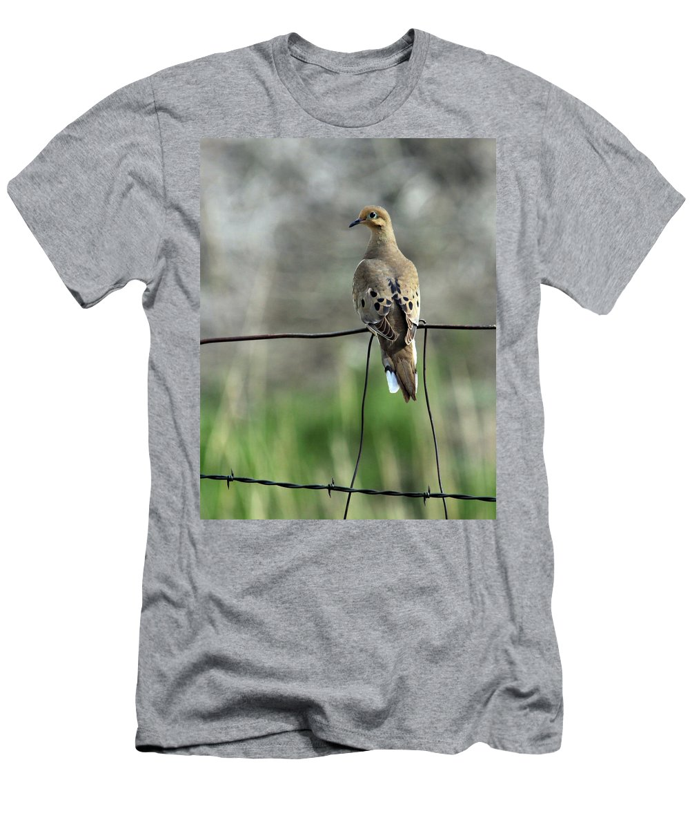 Dove Men's T-Shirt (Athletic Fit) featuring the photograph Mourning Dove by Karon Melillo DeVega