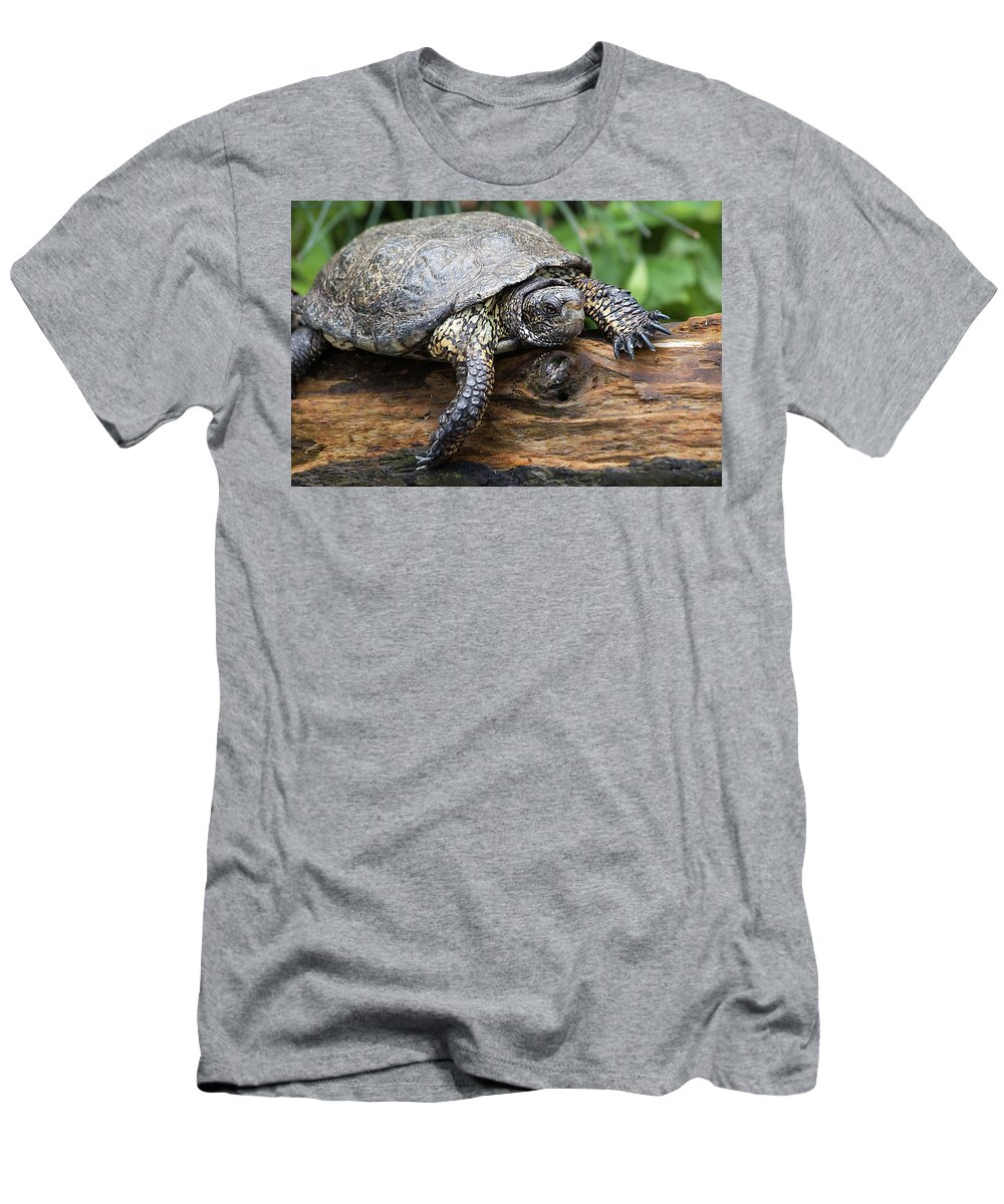 Turtle Men's T-Shirt (Athletic Fit) featuring the photograph My Log by Jay Billings