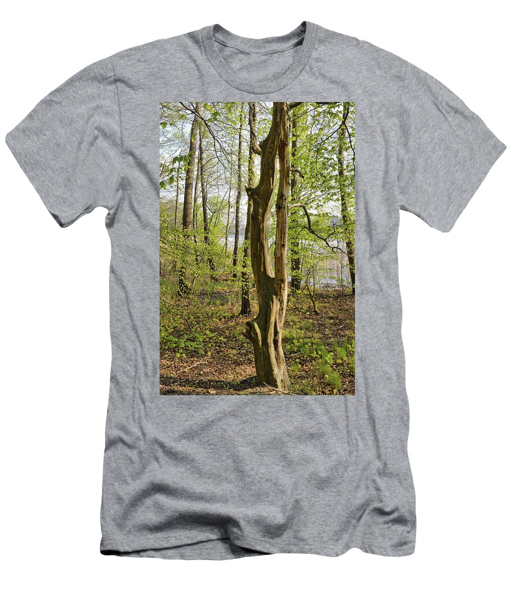 Nature Men's T-Shirt (Athletic Fit) featuring the photograph Nature, Bare Tree. by Adriano Bussi